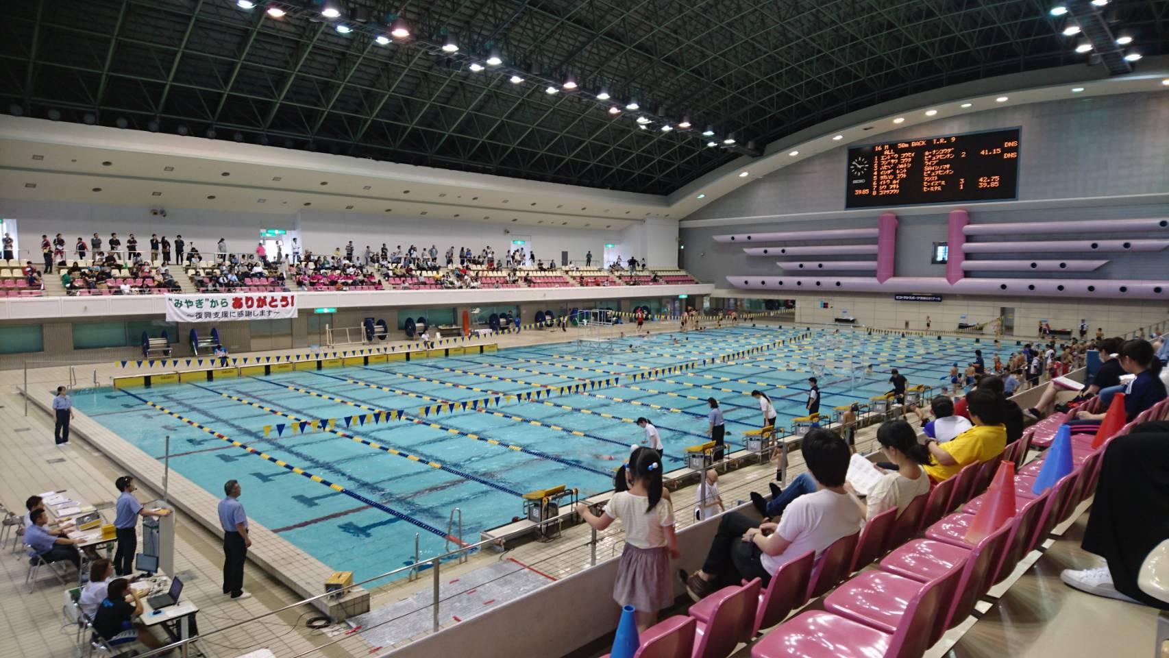 水泳 宮城 連盟 県
