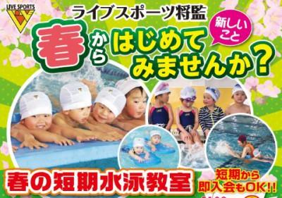 春の短期水泳教室&お試しキャンペーン